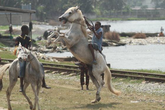 Audriaus Sutkaus asm. archyvo nuotr./Malis-Gvinėja-Dramblio Kaulo Krantas