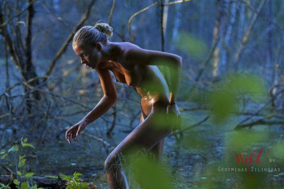 """Gedimino Žilinsko nuotr./Kristina Lusaitė – Gedimino Žilinsko parodos """"Wild"""" modelis"""