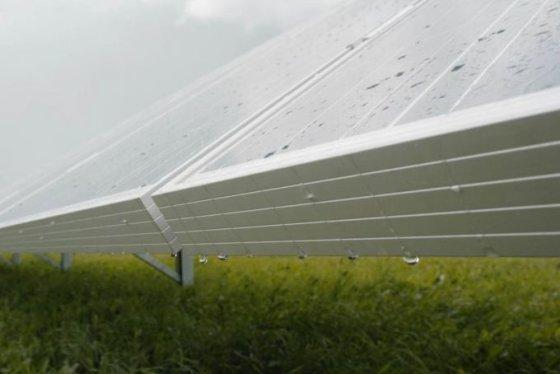 Jurgitos Lapienytės nuotr./Aplyta saulės baterijų elektrinė