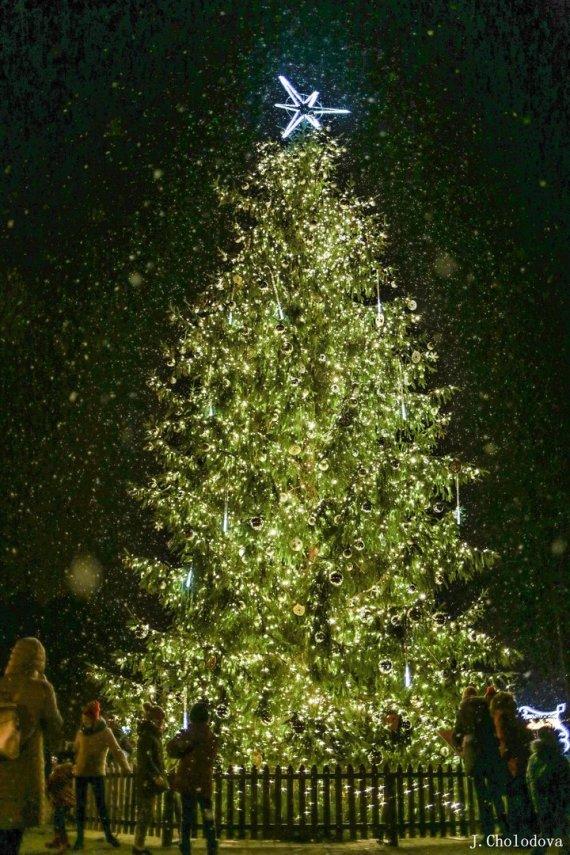 J.Cholodovos nuotr./Visagino Kalėdų eglutės įžiebimo vizualizacijos
