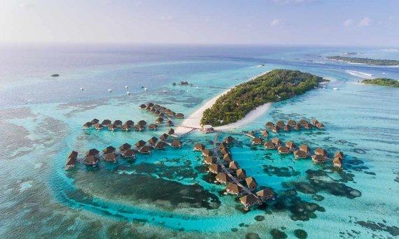 Shutterstock.com nuotr./Maldyvai
