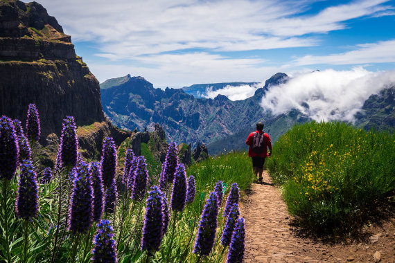 Shutterstock.com nuotr./Ruivo kalnas, Madeira