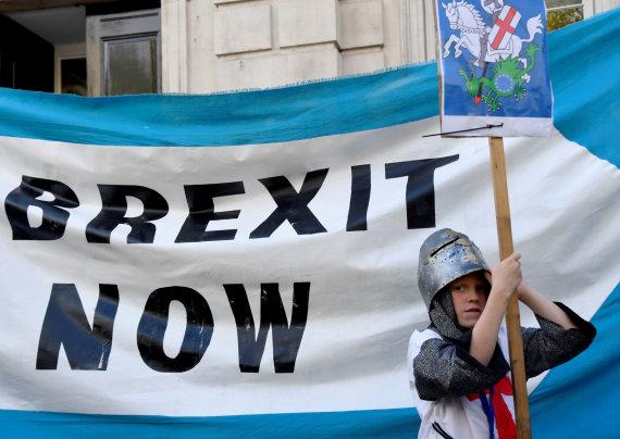 """""""Reuters""""/""""Scanpix"""" nuotr./Už """"Brexit"""" pasisakantis demonstracijos dalyvis"""