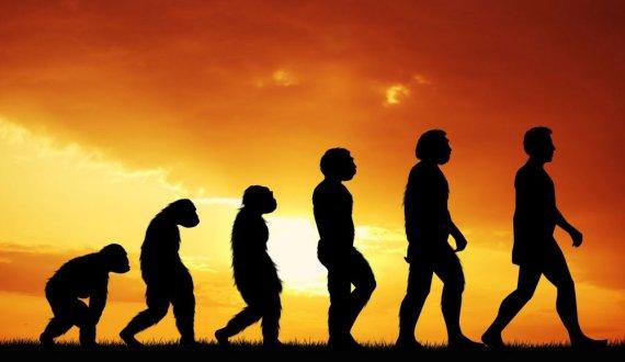 123rf iliustr./Žmogaus evoliucija