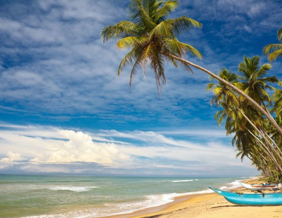 123rf.com/Egzotiškoji Šri Lanka: nuo arbatos lapelio iki milžinės Sigirijos