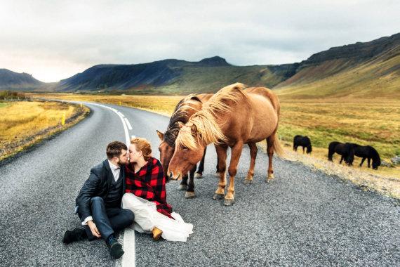 """""""Scanpix""""/""""Caters News Agency"""" nuotr./Nevadinkite Islandijos arklių poniais"""