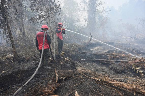 """AFP/""""Scanpix"""" nuotr./Gaisrai Amazonijoje"""