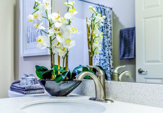 123RF.com nuotr./Orchidėjos vonios kambaryje