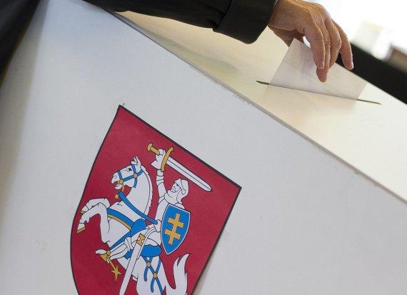 Irmanto Gelūno / 15min nuotr./Balsavimas