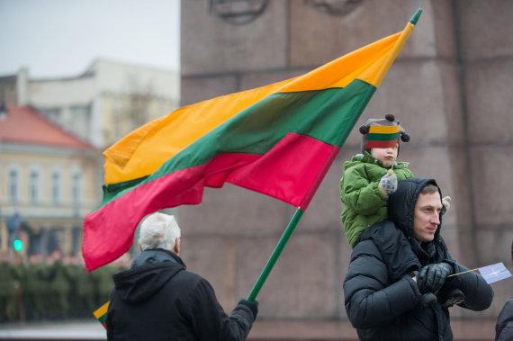 Alfredo Pliadžio nuotr./ Lietuvos vėliava