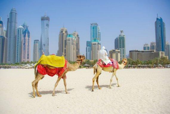 123rf.com nuotr./Dubajus