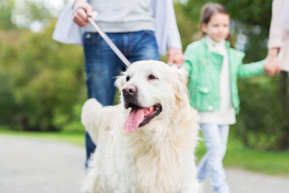 123RF.com nuotr./Pasivaikščiojimas su šunimi