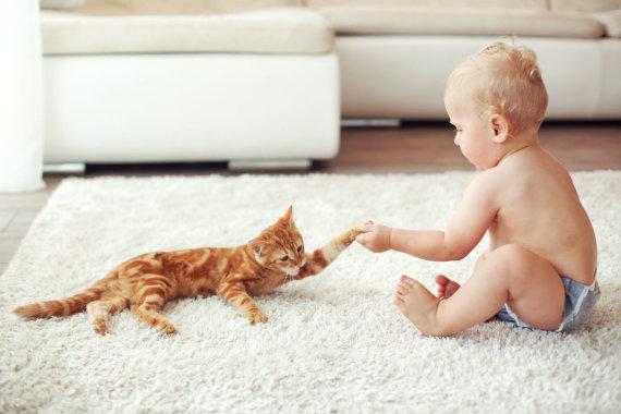 123RF.com nuotr./Katė ir kūdikis