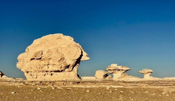 Asm.archyvo nuotr./Baltoji dykuma