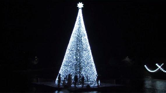 Stop kadras/Anykščių kalėdinė eglė
