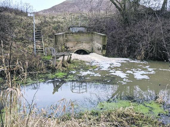 Mindaugo Nefo nuotr./Sausio 1 dieną Šerkšnio upelio taršą pirmieji pastebėjo aktyvūs kėdainiečiai, užfiksavę drumzliną, putojantį vandenį.