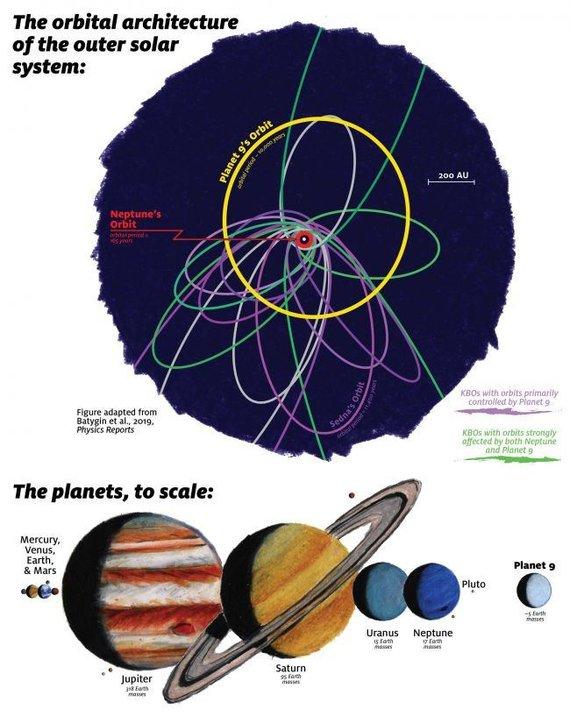 Tolimų Koiperio juostos objektų ir hipotetinės Devintosios planetos orbitos. Violetine spalva pavaizduotas orbitas labiausiai kontroliuoja Devintosios kplanetos gravitacija ir jų orbitos gan glaudžios. Žalias orbitas smarkiai veikia Neptūnas ir jos išsiskirsčiusios plačiau. Atnaujinti orbitų skaičia