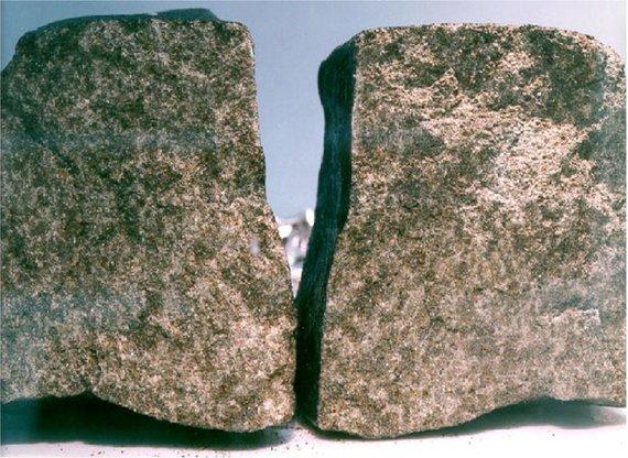Nakhlos meteoritas, atskriejęs iš Marso, mokslininkams gali padėti įminti Raudonosios planetos praeities mįsles. Šaltinis: www.wikipedia.com
