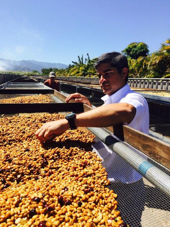 Asmeninio albumo nuotr./Federico Paco Lopezas savo giminės kavos ūkyje