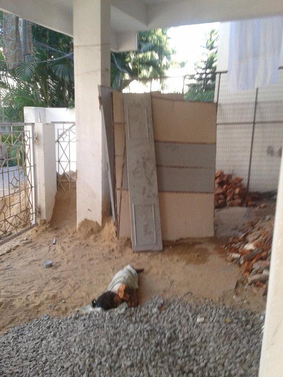 Kol mama nešiojo žvyrą betonavimo darbams, dukra netoliese miegojo pietų miego.