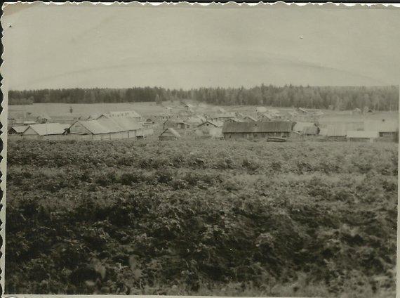 Asmeninio albumo nuotr./Galiašoro panorama 1949 m.