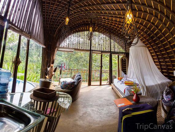 Vali.mehthesheep.com nuotr./Balis