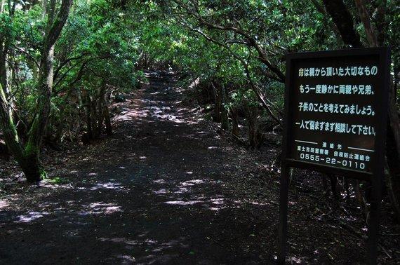 Shutterstock.com/Aokigahara lentelė savižudžiams