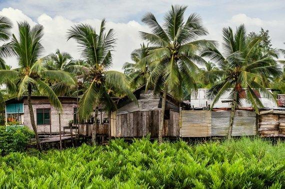 Shutterstock nuotr./Papua Naujoji Gvinėja