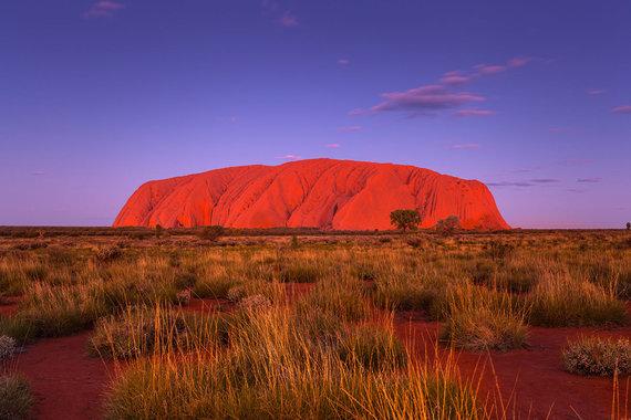 Shutterstock nuotr./Uluru uola