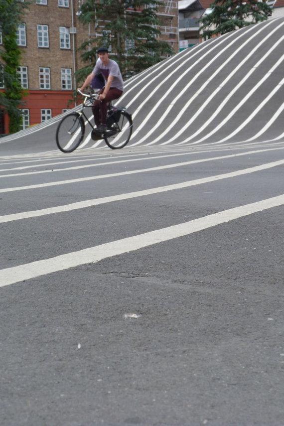 Evelinos Garnelytės nuotr./Dviračiai Kopenhagoje – privaloma transporto priemonė tiek vietiniams, tiek turistams