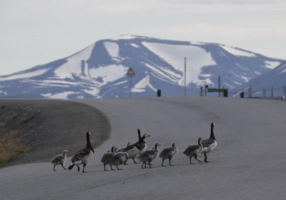 KU nuotr./KU mokslininkų ekspedicija Arktyje.