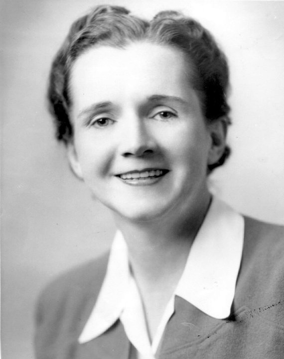 Wikimedia.org nuotr./Rachel Carson