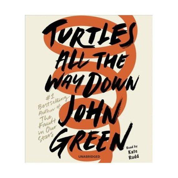 "Knygos viršelis/Knyga ""Turtles All the Way Down"""