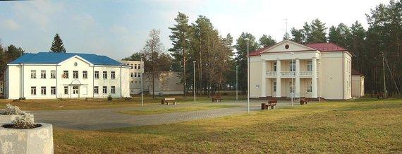 Nuotr. iš Wikipedia.org/Baltoji Vokė