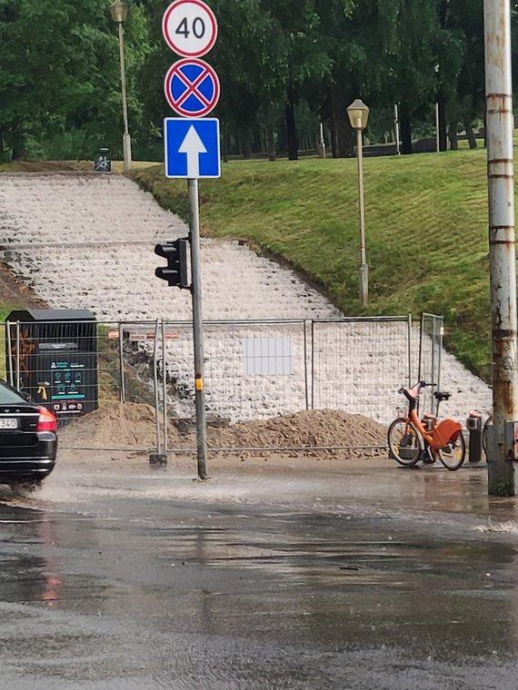 15min skaitytojos nuotr./Liūtis Vilniuje