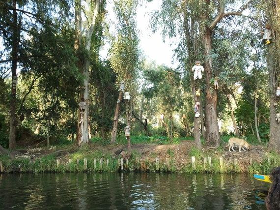 wikimedia.org nuotr./Lėlių sala, Meksikoje