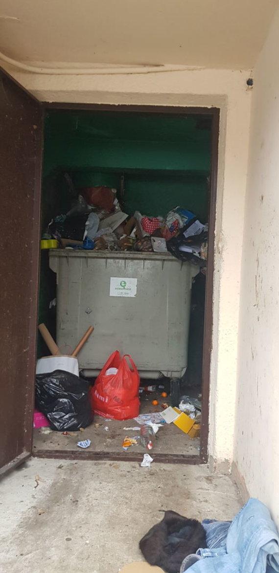 V.Trečioko nuotr./Pilnas konteineris L.Asanavičiūtės g. 4 name