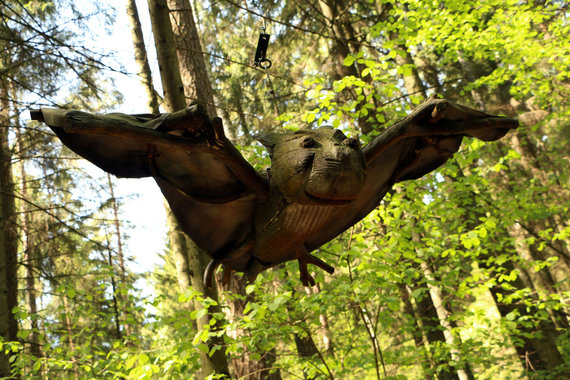 Ūlos Kulvičiūtės nuotr./Ore sklandantis šikšnosparnis