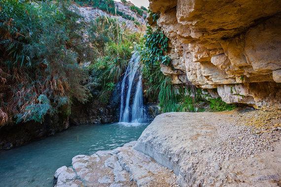 Shutterstock.com nuotr./Ein Gedi oazė, Izraelis