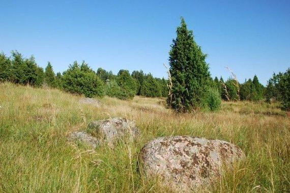 Salantų regioninio parko nuotr./Šauklių riedulyno pažintinis takas