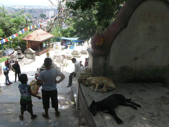 G.Juocevičiūtės nuotr./Katmandu