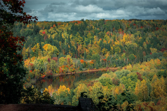 123rf.com nuotr./Gaujos nacionalinis parkas