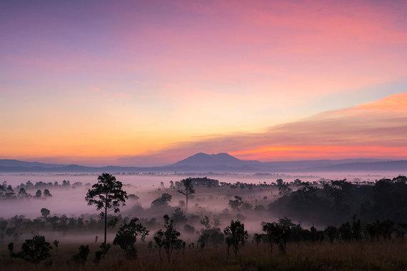 Shutterstock.com nuotr./Thungsalaengluango nacionalinis parkas