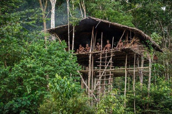 123rf.com nuotr./Papua sala, Indonezija