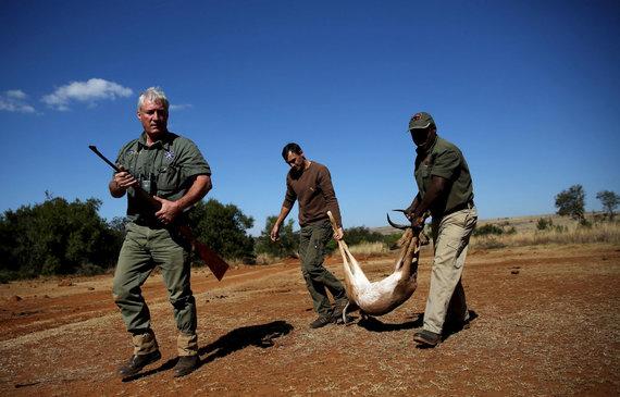 """""""Reuters""""/""""Scanpix"""" nuotr./Medžioklė Afrikoje"""