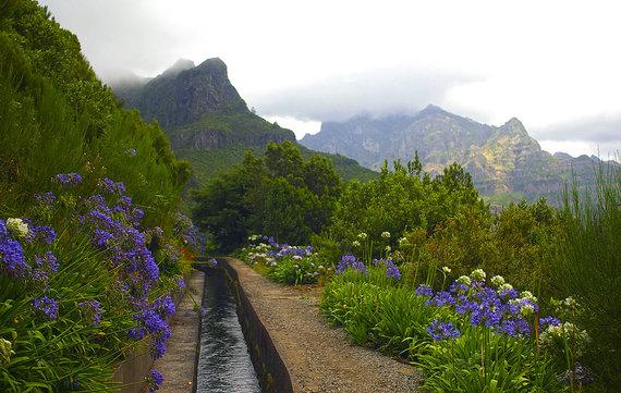 Shutterstock.com nuotr./Drėkinimo kanalai - levados, Madeira
