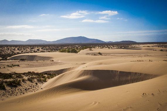 Shutterstock.com nuotr./Parque Natural de Corralejo, Fuerteventūra