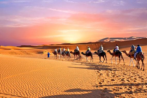 Shutterstock.com nuotr./Arabijos dykuma