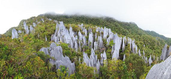 Shutterstock.com nuotr./Mulu Kalno nacionalinis parkas