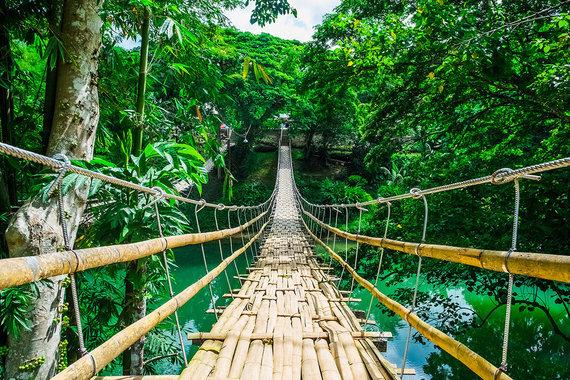 Shutterstock.com nuotr./Tigbao kabantis tiltas, Filipinai